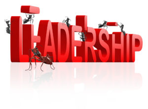 Make Sure Your Company's Leadership Development Programs