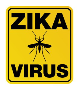 A yellow warning sign with Zika Virus and mosquito silhouette. Vector EPS 10 available.